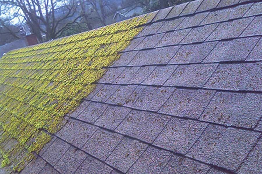 Roof Cleaning & Moss Control